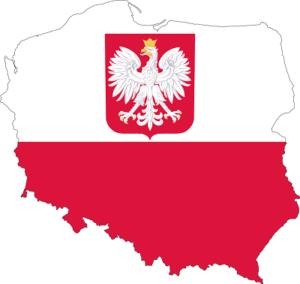 Доставка автозапчастей и комплектующих из Польши