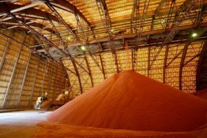 Экспорт удобрений из России