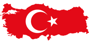 Доставка сборных грузов из Турции